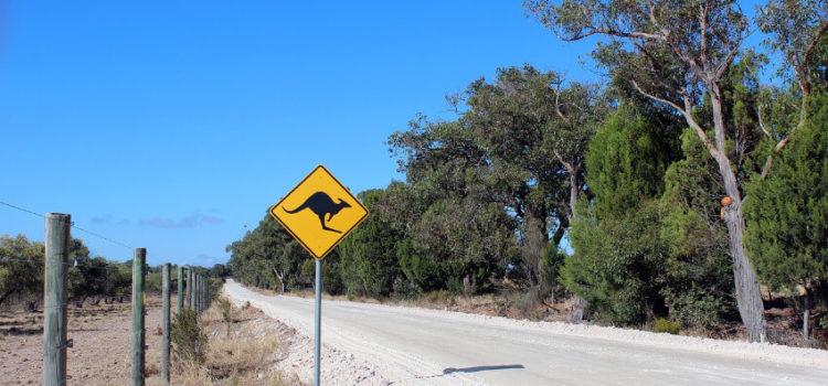 Das sollten Sie wissen, bevor Sie nach Australien reisen
