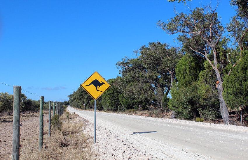 Eine Straße in Australien mit einem Warnschild Achtung Kängurus.