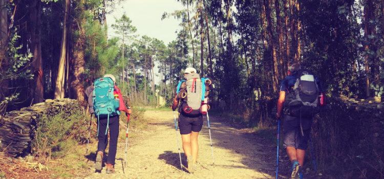 Der Jakobsweg – unterwegs auf dem Camino Frances