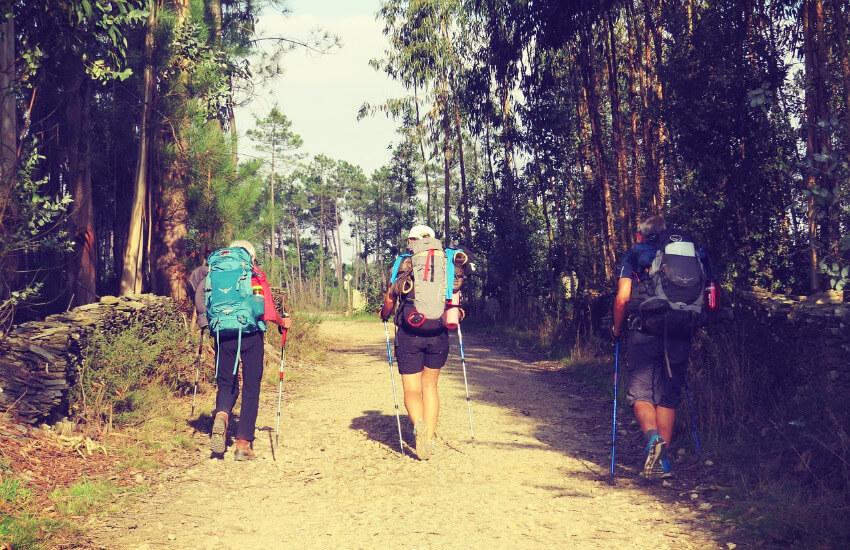 Drei Wanderer mit großem Rucksack unterwegs auf dem Jakobsweg.