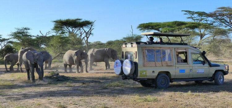 Tipps zu Reisen nach Tansania – was gibt es zu erleben